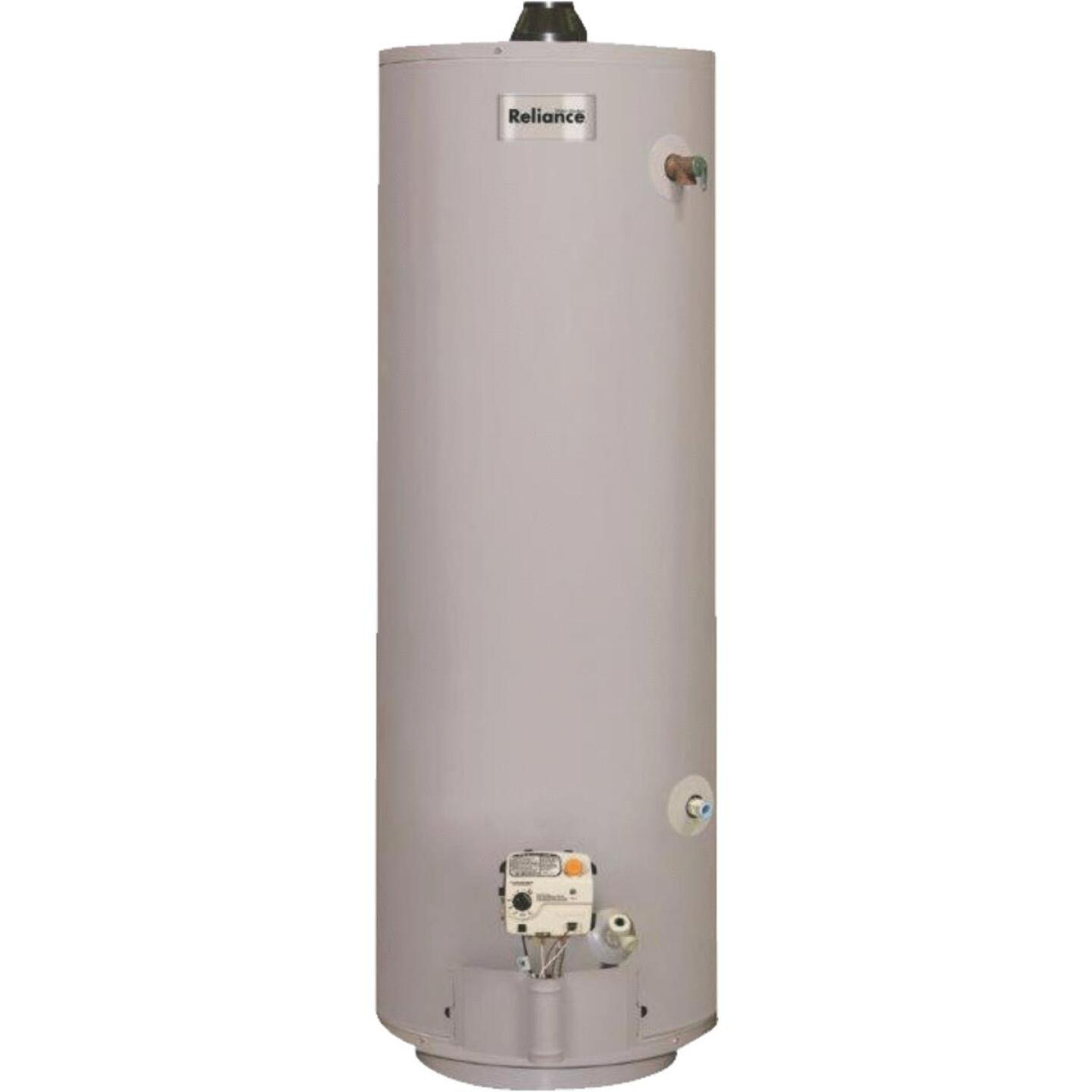 Reliance 30 Gal. Tall 6yr 30,000 BTU Mobile Home Direct Vent Natural Gas/Liquid Propane Water Heater Image 1