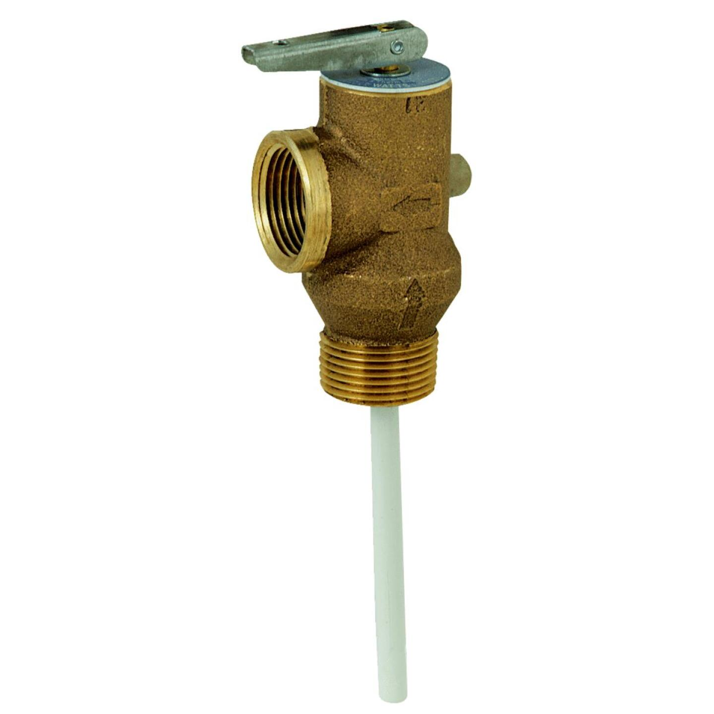 Reliance 3/4 In. MIPS Inlet X 3/4 In. FIPS Outlet Self-Closing Temperature & Pressure Relief Valve Image 1