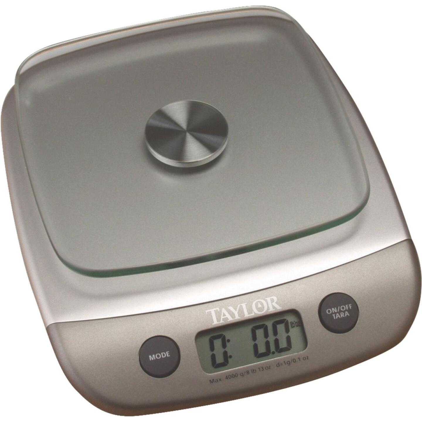 Taylor 8 Lb. Capacity Digital Food Scale Image 1