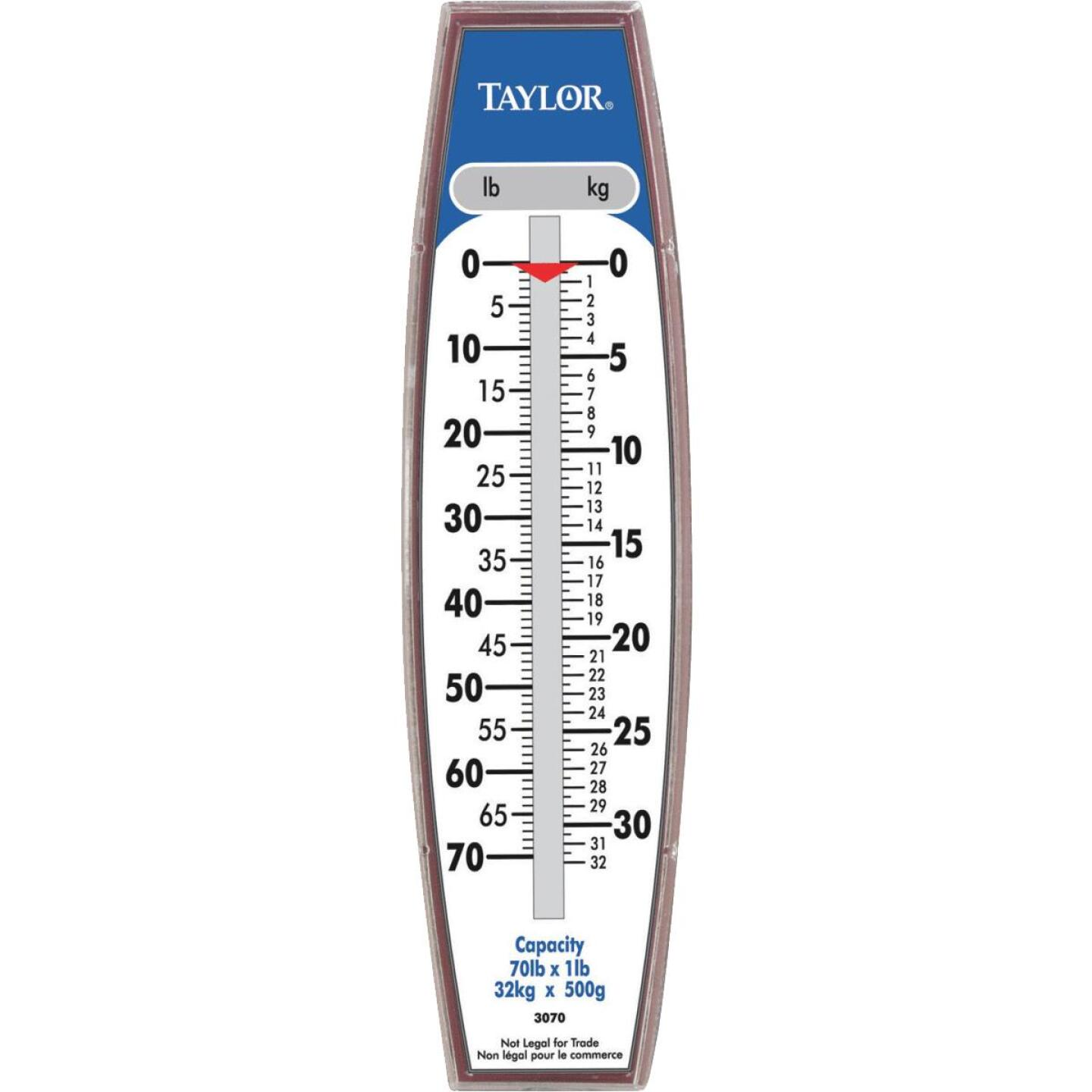 Taylor 70 Lb. Capacity Steel Hook Hanging Scale Image 1