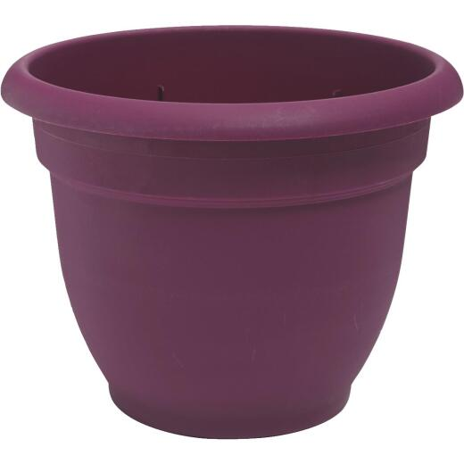 Bloem Ariana 6.5 In. H. x 6 In. Dia. Plastic Self Watering Passion Fruit Planter