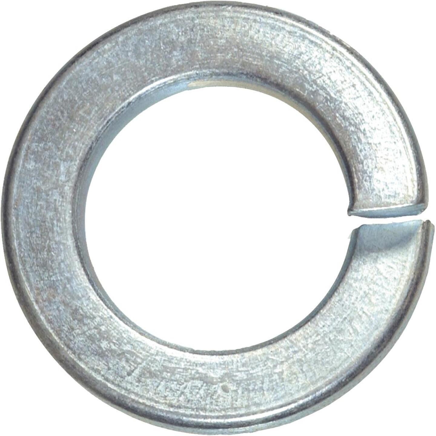 Hillman #8 Steel Zinc Plated Lock Washer (30 Ct.) Image 1