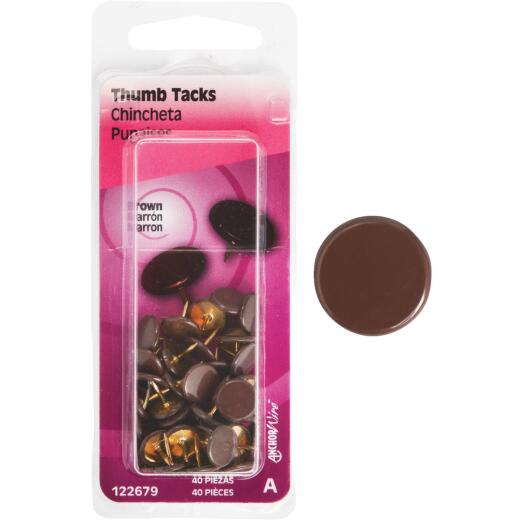Hillman Anchor Wire Brown 23/64 In. x 15/64 In. Thumb Tack (40 Ct.)
