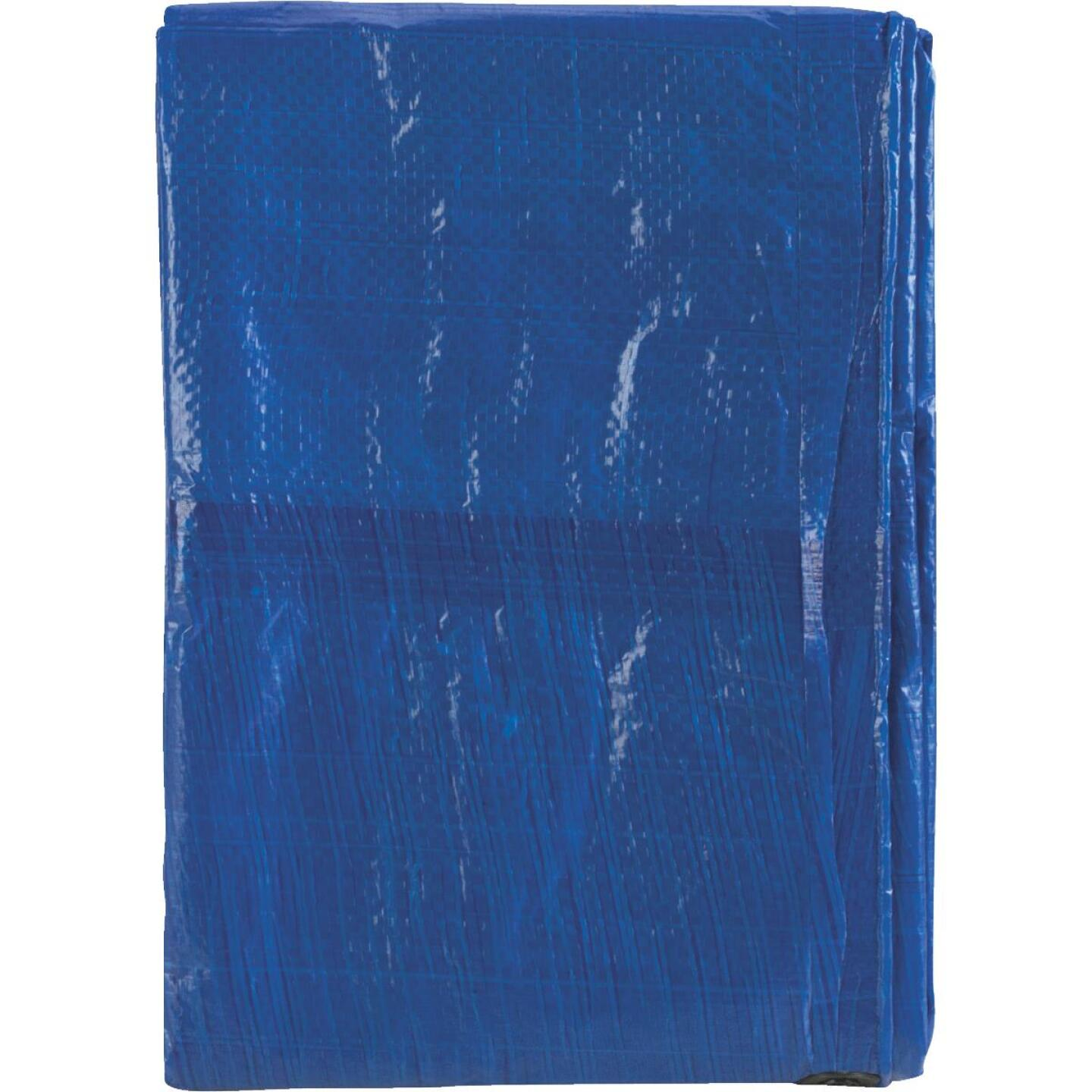 Do it Blue Woven 8 Ft. x 10 Ft. General Purpose Tarp Image 3