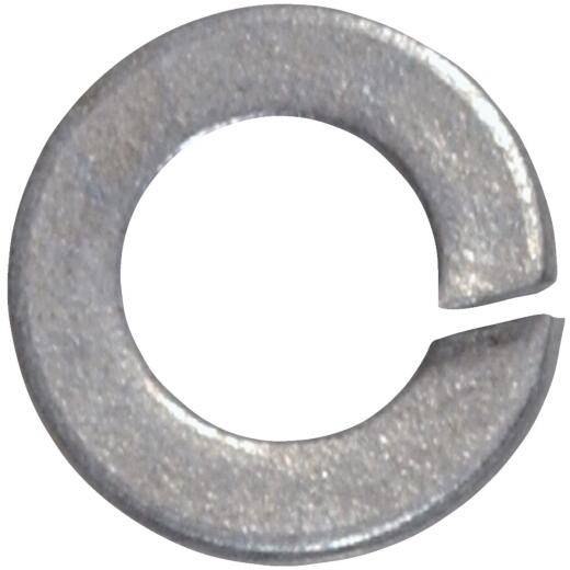 Hillman 3/8 In. Steel Galvanized Split Lock Washer (100 Ct.)