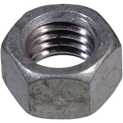 Hillman 3/8 In. 16 tpi Grade 2 Stainless Steel Hex Nuts (100 Ct.)