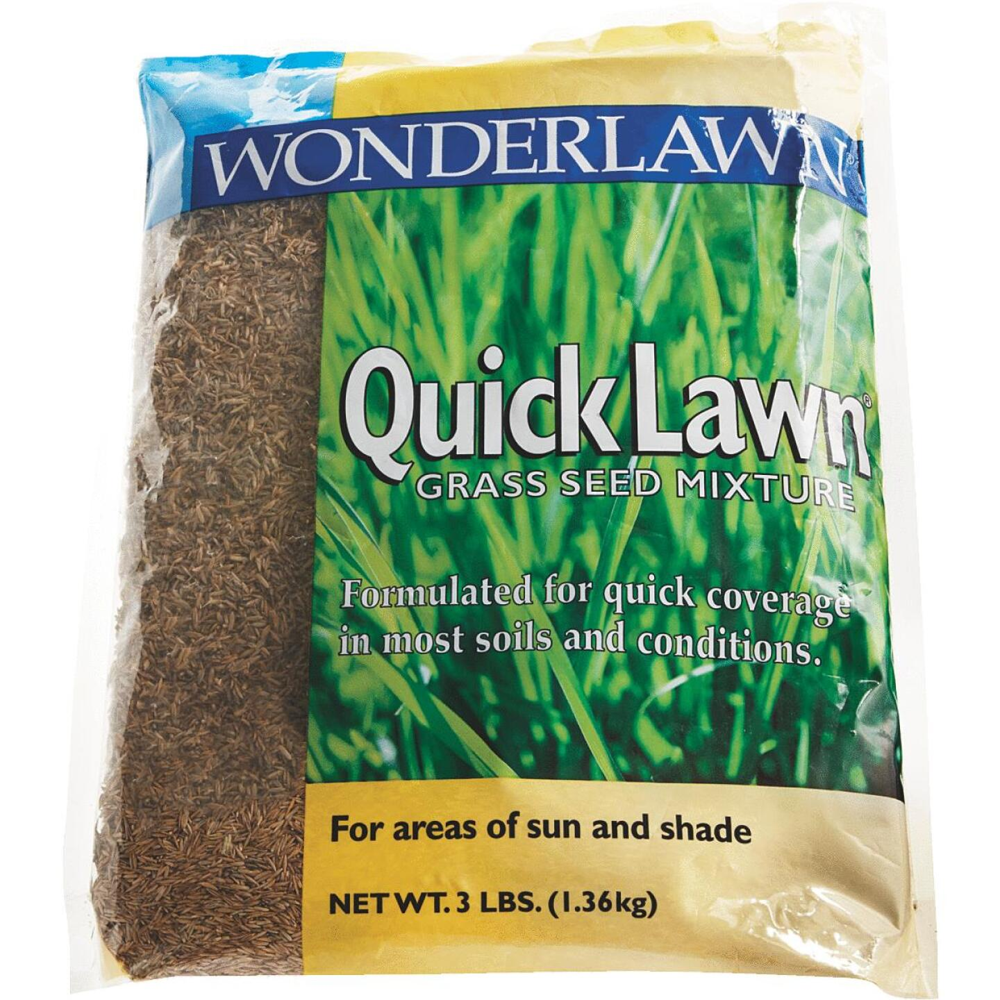 Wonderlawn Quick Lawn 3 Lb. 900 Sq. Ft. Coverage Annual & Perennial Ryegrass Grass Seed Image 2