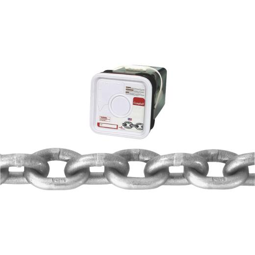 Campbell 3/8 In. 40 Ft. Bright Carbon Steel Coil Chain