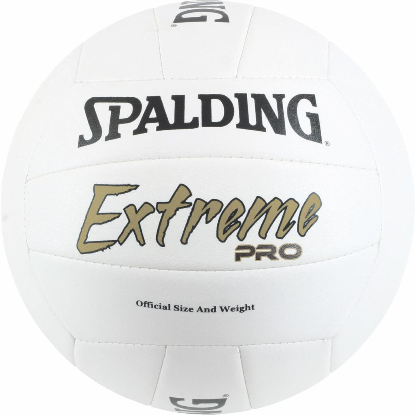EXTREME PRO VOLLEYBALL Image 1